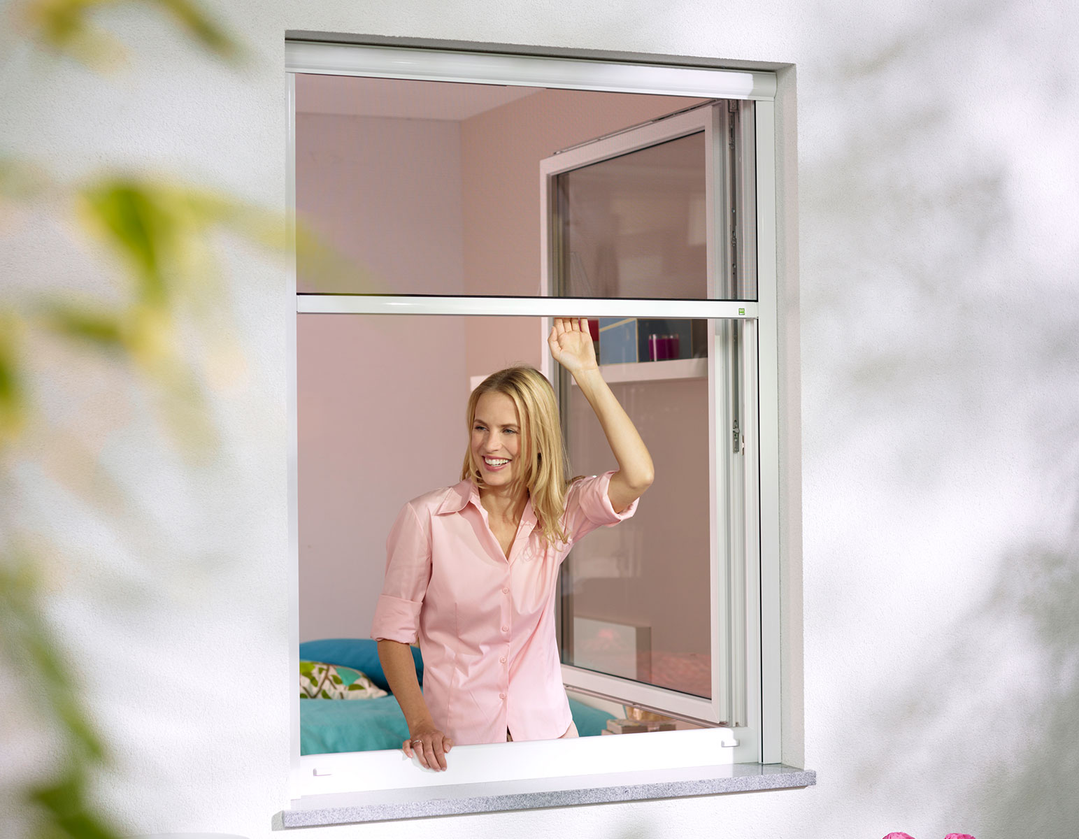 Fenster Scheibling - Insektenschutz - Rollos